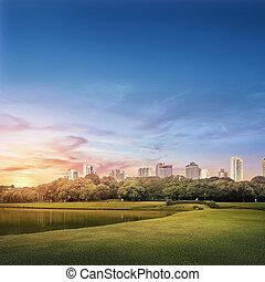 Barigui Park - Curitiba urban landscape