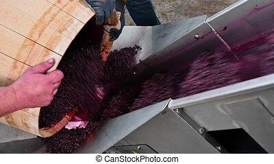 baril, fermentation, pendant, processus, mélange, vin