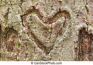 Bark Heart