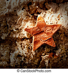 bark star shape christmas symbol on cork background
