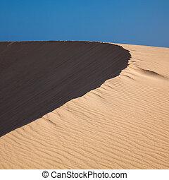 barkhan dune, evening light, long shadows