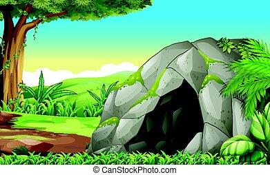 barlang, erdő, színhely