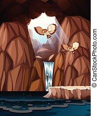 barlang, noha, vízesés, és, baglyok