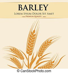 Barley concept with grains design, vector illustration 10 eps graphic.