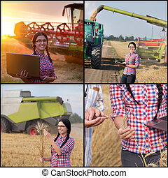 Barley harvesting collage. Set of images with young woman...