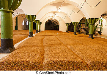 barley in old brewery in czech republic - ready for beer -...