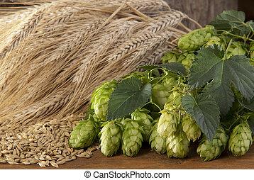 barley with hop cones