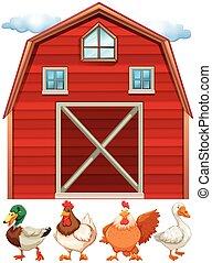 Barn and farm animals