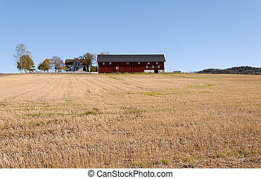 Barn in a Field