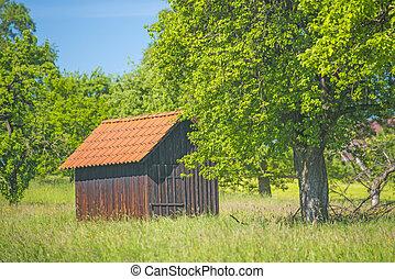 Barn in a meadow