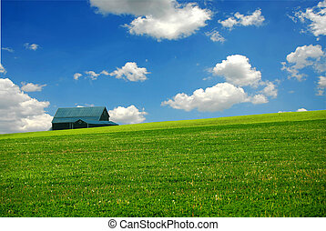 Barn in summer farm field, deep blue sky