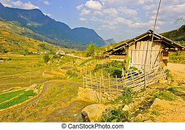 Barn in hill tribe rice crops in Sapa, Vietnam