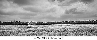 Barn in Soybean Field