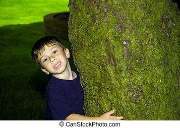 barn, krama, a, träd