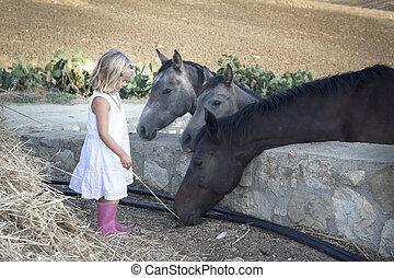 barn, med, hästar