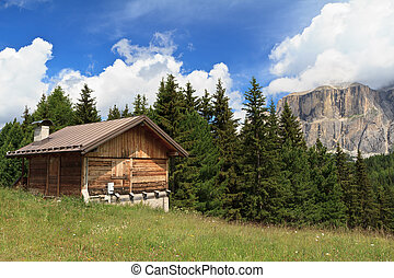 barn on Alpine pasture