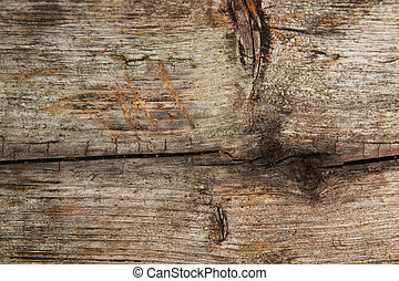 Barn wood - Close up of a panel of  barn wood