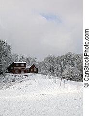 barna, épület, noha, hó