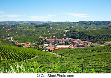 Barolo medieval town surrounded by vineyards in Italy