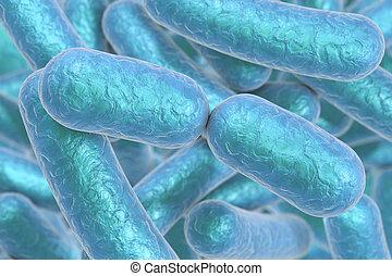 barra, bacterias, formado