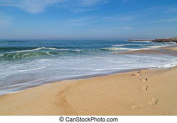 barra., da, 浜, barra, praia