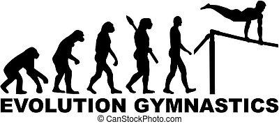 barra, gimnasia, alto, evolución