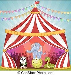 barraca circo, com, animais