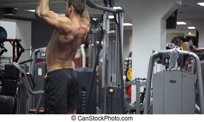 barre, athlétique, exercisme, gym., construire, mâle