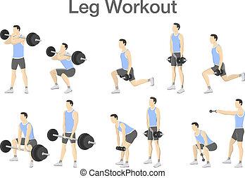 barre disques, séance entraînement, ensemble, haltère, jambe