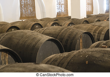 Barrels for wine cellar