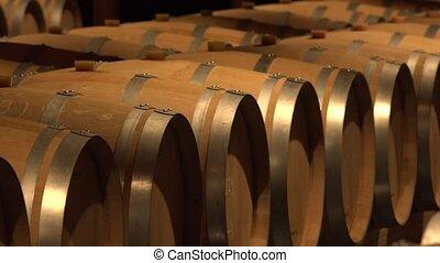 Barrels in Wine Cellar-Bordeaux Wineyard, France, Europe