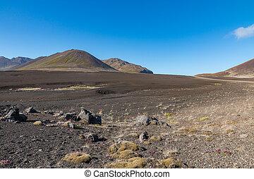Barren Berserkjahraun - Barren lava field, resembling a ...