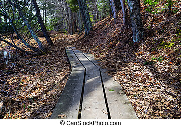 Barren Hiking Trail