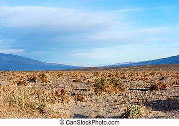 Barren outdoor desert with mountains in background