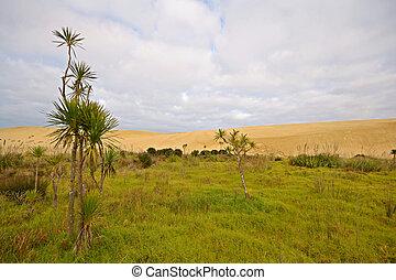 Barren sand dunes and green meadows