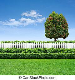 barrière blanche, et, haie, à, arbre, sur, ciel bleu