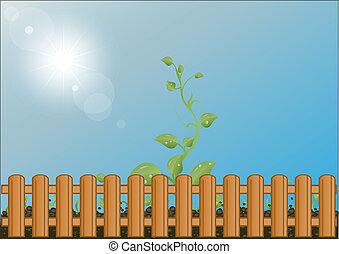 barrière, bois, soleil, ciel, contre, derrière, vecteur, vert, illustration, pousses