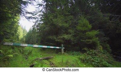 barrière, marques, carpathian, bois, trailhead, montagnes