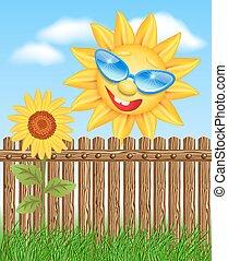 barrière, soleil, tournesols, regarde, jette coup oeil, dehors