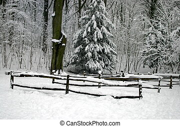barrières, dans, les, neige