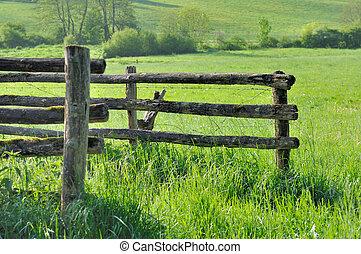 barrier in meadow