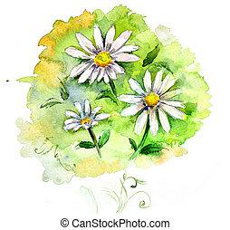 barva vodová, bojiště, květiny