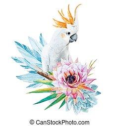 barva vodová, papoušek, s, květiny