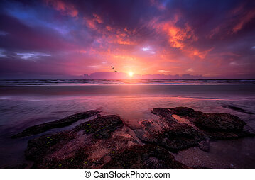 barvitý, florida, východ slunce