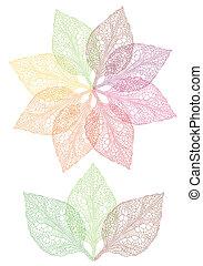 barvitý, list, květ