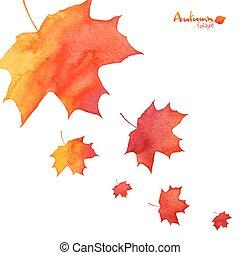 barwiony, liście, akwarela, upadek, pomarańcza, klon