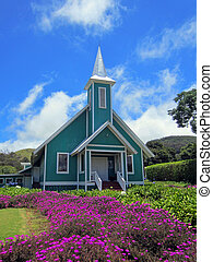 barwny, hawajczyk, kościół