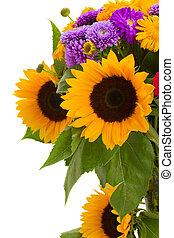 barwny, posy, od, jesień, kwiaty