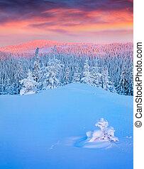 barwny, zima, wschód słońca, w, góry.
