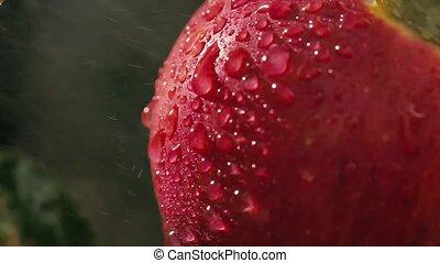 bas, flux eau, pomme, gouttes